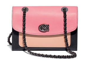 กระเป๋าสายโซ่ Colorblock Leather Parker Shoulder