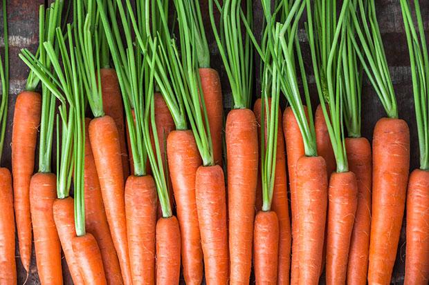ควรกินแครอททุกวัน