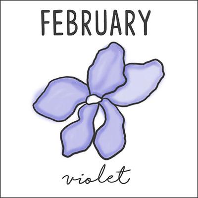 กุมภาพันธ์ ดอกไวโอเล็ต