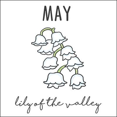 พฤษภาคม ดอกลิลลี่ ออฟ เดอะ วัลเลย์