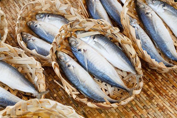 ปลาทะเลที่อุดมด้วยโอเมก้า 3 อาหารต้านหวัด
