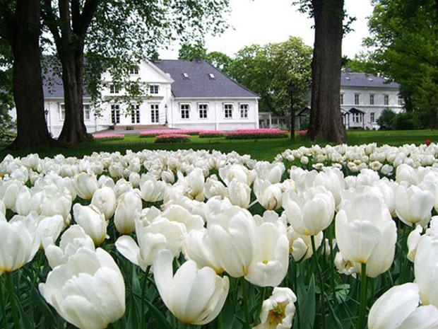 Bygdøy Royal Farm ออสโล ราชวงศ์นอร์เวย์