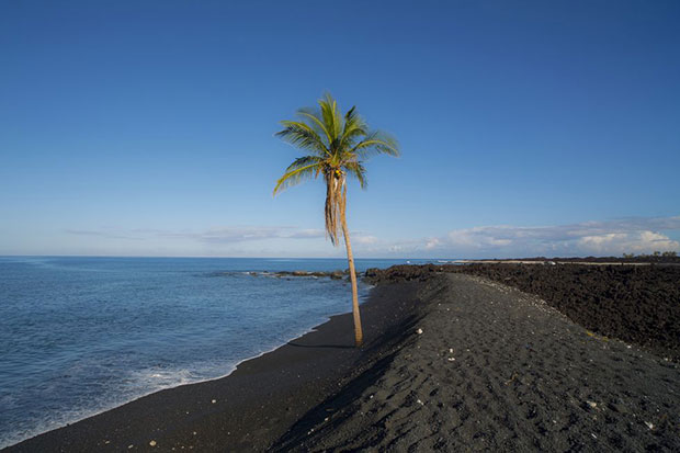 หาดทรายดำ อ่าวคีไวกิ ฮาวาย